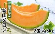 <2021年7月下旬りお届け>北海道壮瞥産 赤肉メロン(ニューキングメロン)Lサイズ2玉