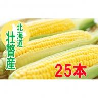 <2020年8月初旬よりお届け>約10kg!北海道壮瞥産とうもろこし(恵味)Lサイズ25本