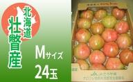 <2021年3月上旬より順次出荷>北海道壮瞥産 オロフレトマト24玉入り(Mサイズ)