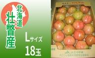 <2021年3月上旬より順次出荷>北海道壮瞥産 オロフレトマト18玉入り(Lサイズ)