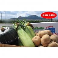 <2020年5月下旬よりお届け>4回お届け!北海道壮瞥産 旬の野菜セット【アスパラガス・とうもろこし・カボチャ・じゃがいも】定期便