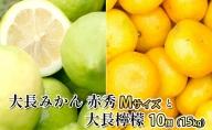大長みかん 赤秀 Mサイズと大長檸檬10個(15kg)