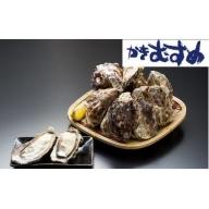 かきむすめ 殻つき&むき身牡蠣セット