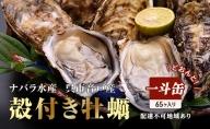 ナバラ水産 殻付き牡蠣 どおんと!(75ケ~80ケ缶入り、約8~9kg)