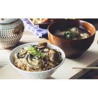 美浄生牡蠣 牡蠣飯セット