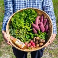 C−201.佐賀産季節の旬野菜10種類とドレッシング