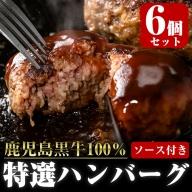 鹿児島黒牛特選ハンバーグ6個入り(ソース6個付き)_chuzan-3851