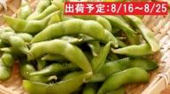 五城目産 産直枝豆1kg