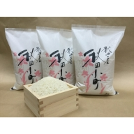 【令和元年産米】B2404 秋田米「あきたこまち」白米2kg×3袋