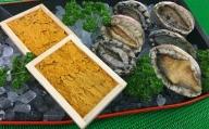 B067◇『磯の最高級コンビ』淡路島由良の黒ウニと淡路産天然活アワビ(赤・黒)食べ比べセット