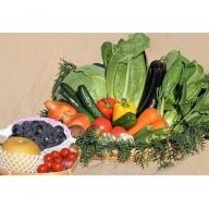 【3ヶ月定期便】穫れたて夏野菜・果物(6~8月)あんずの里[A6203]