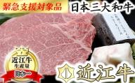 極上近江牛(A4・A5)フィレステーキ ひょうたんや特製ステーキソース付【300g(150g×2枚)】【E018SM1】