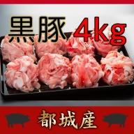 MK-8910_都城産黒豚切り落とし4kg