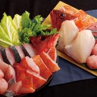 R540 五島列島天然魚おまかせ海鮮鍋(約3人前)