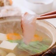 R654 極上くえスープで味わう真鯛しゃぶしゃぶ