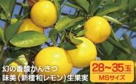 T851 させぼレモン生果実(新種和レモンみよし)
