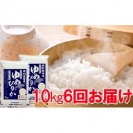 北海道赤平産ゆめぴりか特別栽培米10kg×6回お届け
