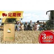 北海道十勝 前田農産パン用小麦粉「キタノカオリ」25kg【W018】