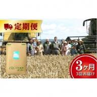 北海道十勝 前田農産パン用小麦粉「ゆめちから」25kg 定期便【W019】
