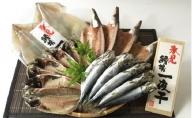 氷見産きときと魚一夜干し!鱈場特選一夜干し4種詰合せ《かます・あじ・いわし・するめいか》