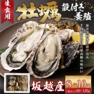 AK012殻付き牡蠣旅する牡蠣プレミアムオイスター室戸海洋深層水 坂越8~10個入り