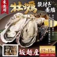 AK013殻付き牡蠣旅する牡蠣プレミアムオイスター室戸海洋深層水 坂越12~15個入り