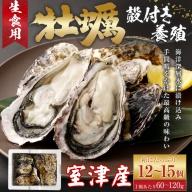 AK015殻付き牡蠣旅する牡蠣プレミアムオイスター室戸海洋深層水 室津12~15個入り