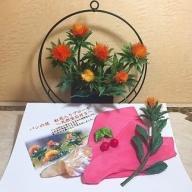 M-016 パンの花 紅花入りブローチ(天然真珠付き)・紅花染めポケットチーフ・紅花の花 (花器付き) 1