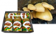 大江町柳川産 原木むき茸水煮200g×5缶(固形量)