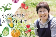 【年4回発送】小谷村特産品定期便 おたりの旬をお届けします