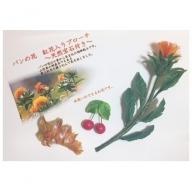 B-030 パンの花 紅花入りブローチ(天然真珠付き)2