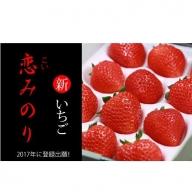 B10-119 佐賀県産いちご 恋みのり300gx2パックセット TM