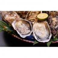 オホーツク佐呂間産 殻付き2年牡蠣2.5kg(20~25個前後)