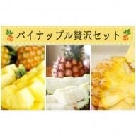 農園ファイミール 完熟パイン食べ比べセット5kg(4~8玉)