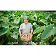 農家直送 上庄里芋 土付き 3kg