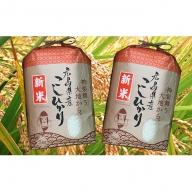 安芸高田市産 コシヒカリ 10kg(5kg×2袋)