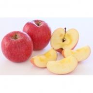 りんご(ふじ14個から16個5kg前後)