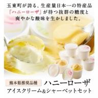 ハニーローザアイスクリーム&ハニーローザシャーベット 120ml×各4個 《30日以内に順次出荷(土日祝除く)》 熊本県玉東町 すもも ハニーローザ アイス ぷらっとぎょくとう抜群の糖度と爽やかな酸味♪