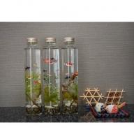 ハーバリウム 金魚ボトル 3本セット