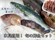 天然のいけす 富山湾 氷見漁港 旬の鮮魚セット※配送地域限定