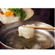 高級魚をご家庭で!豊後ハモの骨切り&唐揚げ用(計1kg)・通