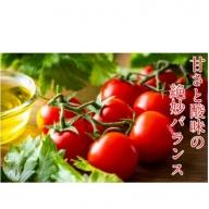 リコピンたっぷり!国東産ミニトマト3kg
