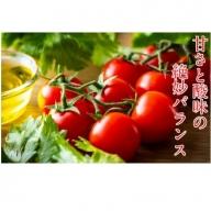 国東産ミニトマト1.2kg※嬉しい小分けタイプ