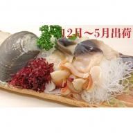 北海道日高沖「鮮ホッキ貝」剥き身20個
