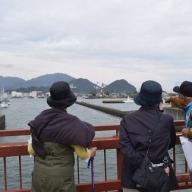 a10-473 焼津の観光案内 浜通りコース