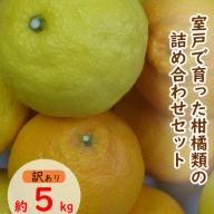 RK042【訳あり】柑橘詰め合わせセット(約5kg)