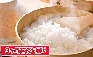 【定期便】長野県産「あきたこまち」(5kg×3回)【橋本商事】