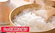【定期便】長野県産「あきたこまち」(5kg×6回)【橋本商事】