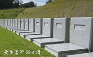 「袋井市夢の丘墓園」墓所ポイント(※要事前連絡)