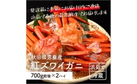 男鹿沖産紅ズワイガニ700g前後×2匹【男鹿なび】